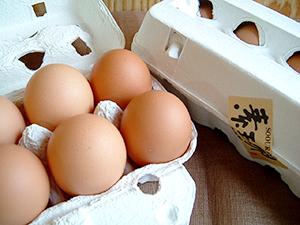 村上市食材の素王卵