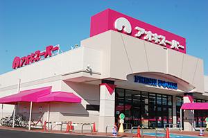 主力業態の食品スーパー