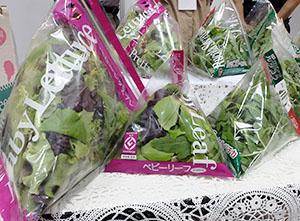 水戸菜園の「パットラス」は鮮度保持・形状維持を実現