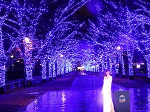 『青の洞窟 SHIBUYA』点灯式=11月22日・代々木公園ケヤキ並木
