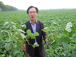 自営農場で作柄を説明する大明食品工業の蔡敬虔社長
