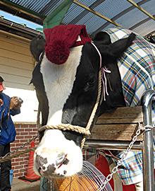 酪農経営は重要な岐路に立たされており、乳業も車の両輪として一体となって課題解決に取り組む意向だ