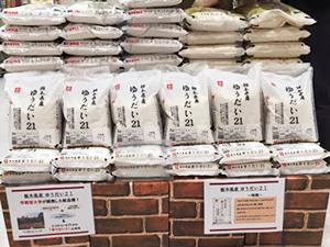 栃木県内のイトーヨーカドーの店頭に陳列される「ゆうだい21」