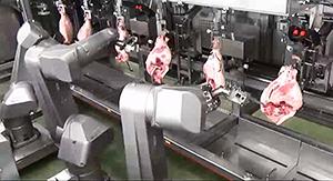 豚ももを1本ずつX線で測定し、個体差に応じた最適な位置でカットする