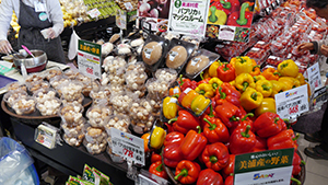 美浦村特産のマッシュルームとパプリカは売場でも大きく展開