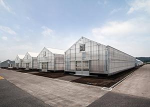 熊本研究農場のハウス群