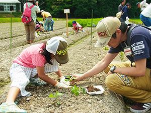 10月の枝豆収穫までのお楽しみ