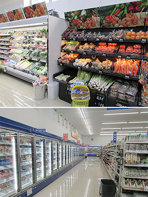 (上)DgSの生鮮売場(下)DgSの冷凍食品売場