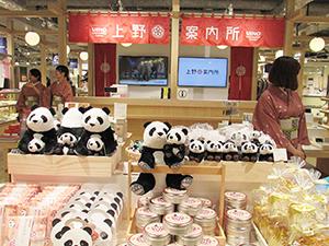 上野フロンティアタワー地下1階の上野案内所は上野御徒町地区の名産品を販売。パンダグッズが目を引く