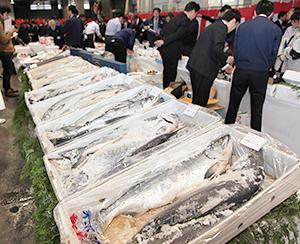 年末年始の水産品商材は深刻な漁獲減で全体的に高騰傾向