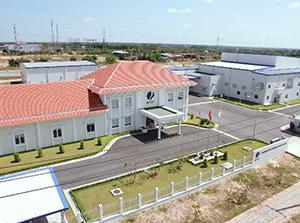 マル井が粉わさびの製造を委託するベトナム・ドンナイ省のAFCP社ロンタン工場