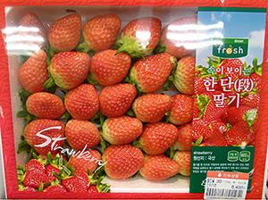 日本由来の品種が韓国に流出。韓国で品種改良が進み品種登録された「ソルヒャン(雪香)」