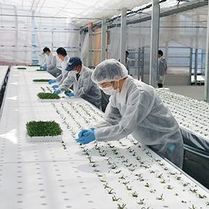 地域農業活性化や雇用促進で地元の期待が高まる