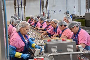 作業効率化と地元雇用の両立を目指すラミレス