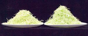 千切りキャベツの外観比較。左が次亜塩素酸水(pH6.0)、右が「野菜キレイMiBO システム」による洗浄・殺菌。左はボリューム感が劣り、色調も黄味がかっている