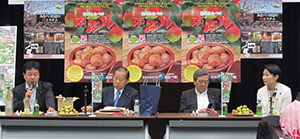 左から鶴保庸介参議院議員、二階俊博幹事長、林幹雄衆議院議員、小渕優子衆議院議員