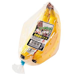有機とフェアトレードの認証を受けたバナナ