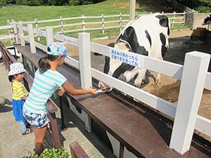 牛乳や乳製品の健康価値やおいしさへの注目が高まり市場拡大が続く