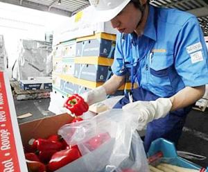 〉輸入食品監視業務(検疫所)=カロリーベースで約6割を輸入食品に依存している我が国は、安全性確保の観点から輸入業者に輸入届出の義務を課し、厚生労働省検疫所では食品衛生監視員が審査や検査を行っている