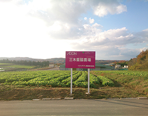 グローバルGAPの認証を受けたイオン農場の三木里脇農場(写真提供=イオン)
