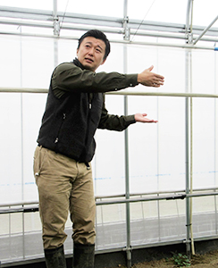 ビニールハウス内で説明する田中裕人高根ベビーリーフ菜園社長