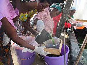 女性グループによるスピルリナ小規模生産