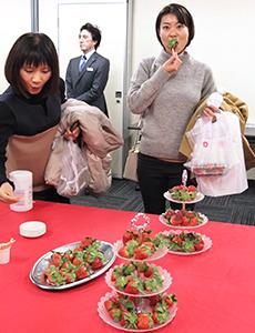 「いちご王国」栃木県産イチゴを知ってほしいとPR