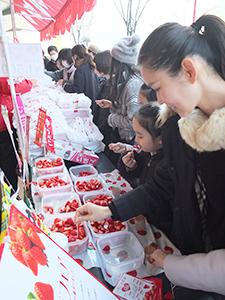 ブランドいちごの食べ比べ。「甘~い」とにっこり(東京交通会館前で)