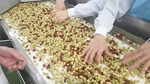 業務用市場で52%のシェアを持つ豆素材。ウチ・ナカ・ソトへのグループ提案力も強みだ